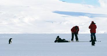 arctic_thumb
